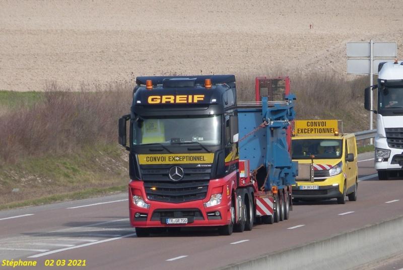 Greif  (Trierweiler) P1560618