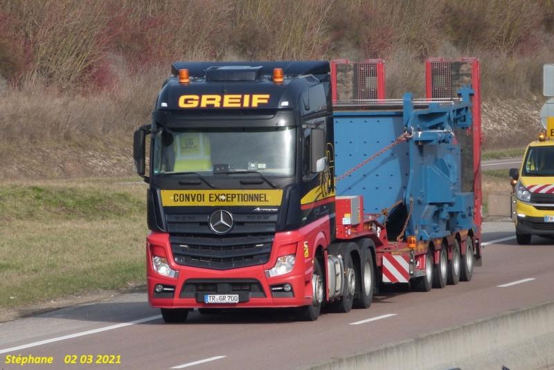Greif  (Trierweiler) P1560619