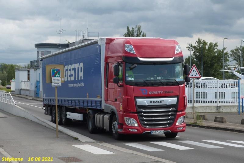 Quality Trans  (Pinczow) P1580136