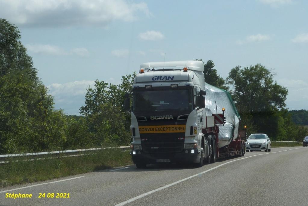 Gran  (Slupsk) P1580667