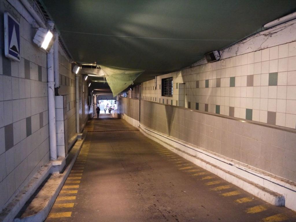 Rénovation du passage commercial du quartier du Pont de Sèvres 2018-014
