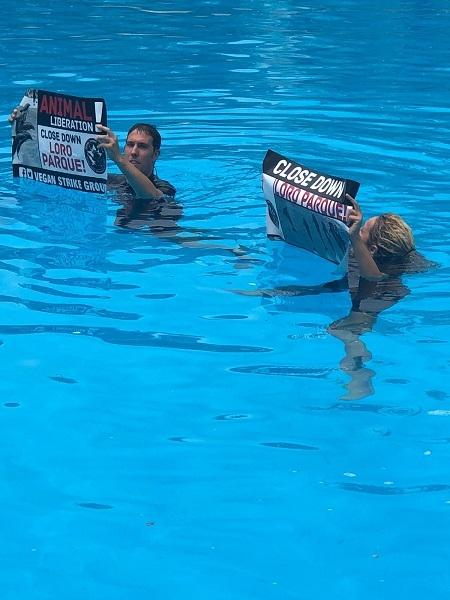 Activists protest in Loro Parque Dolphin Pool. 50979-10