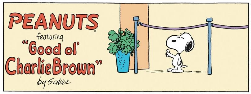 Peanuts. - Page 38 Capt1022