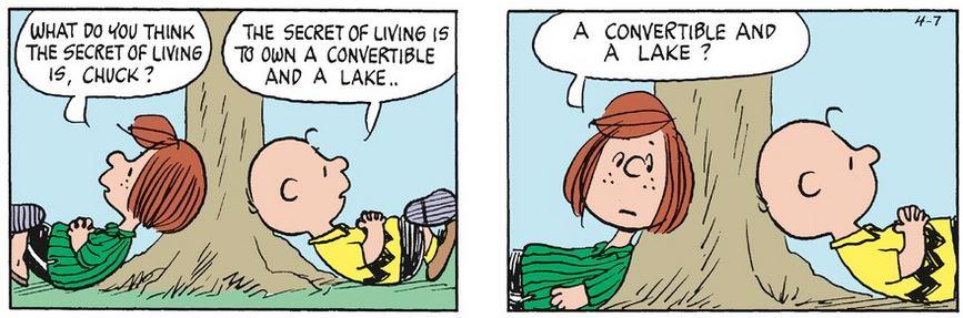 Peanuts. - Page 39 Capt1236