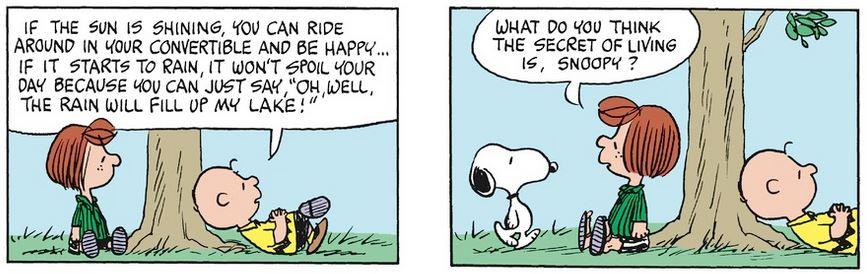 Peanuts. - Page 39 Capt1237