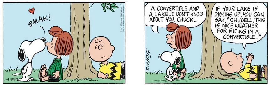 Peanuts. - Page 39 Capt1238