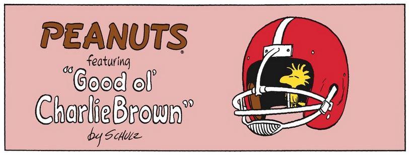 Peanuts. - Page 34 Captu642