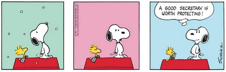 Peanuts. - Page 34 Captu699