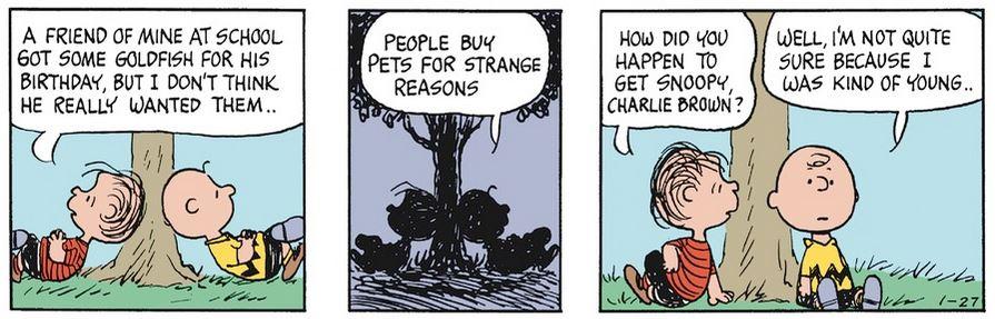 Peanuts. - Page 37 Captu885