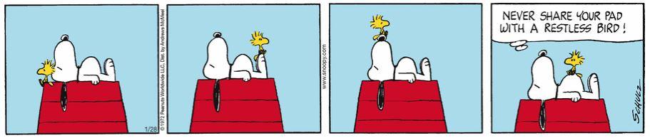Peanuts. - Page 37 Captu889