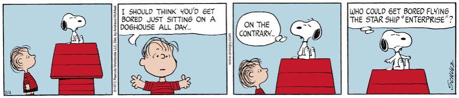 Peanuts. - Page 37 Captu911