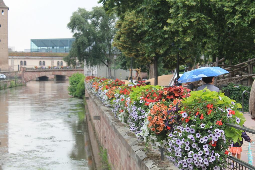 The Rhine. Img_5629