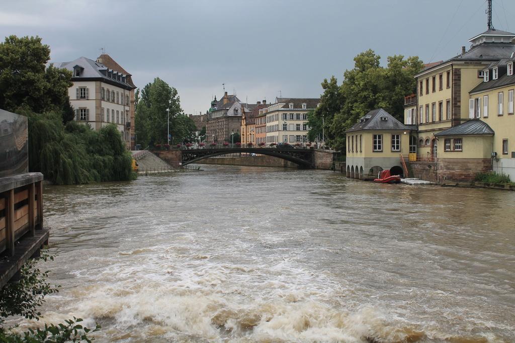 The Rhine. Img_5630