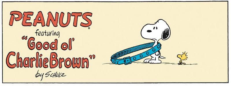 Peanuts. - Page 37 P110