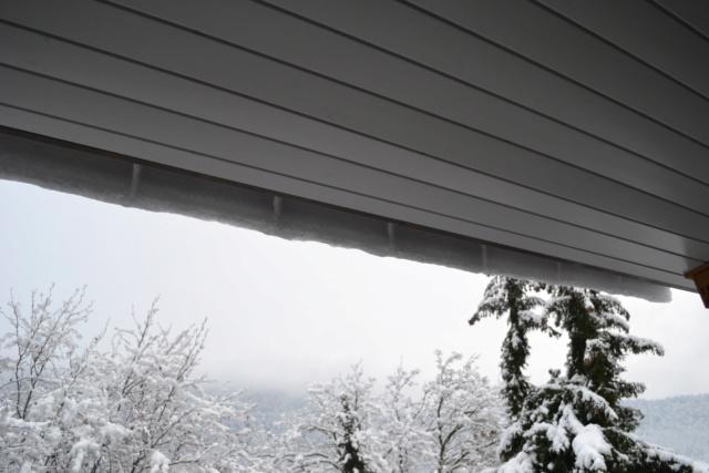 La neige sur le toit Dsc_9281