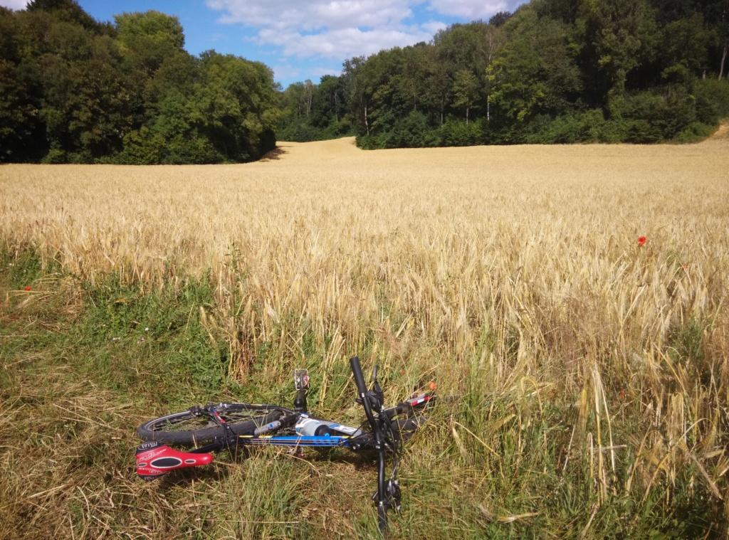 Engin electric de l'IUT de l' Aisne: 2019...reflexion mobilité - Page 26 Img_2180