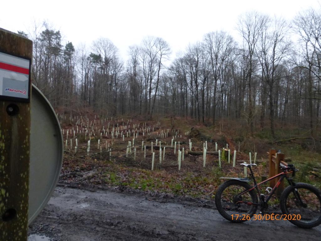 Engin electric de l'IUT de l' Aisne: 2019...reflexion mobilité - Page 33 P1050421