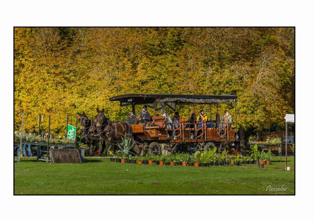 Salon Art & Habitat Château de Dampierre, 9-10-11 octobre 2020 26_res14