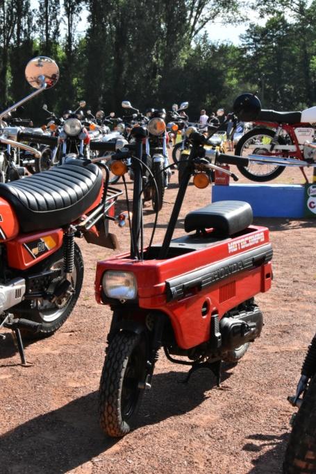 Expo 23 juin Gué-de-Longroi Dsc_2778