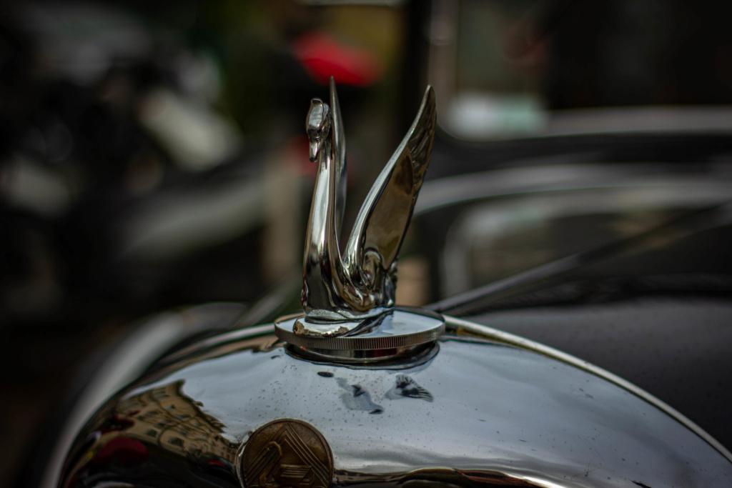 Fête des Grand-Mères Automobiles, dimanche 1er mars 2020 Img_6409