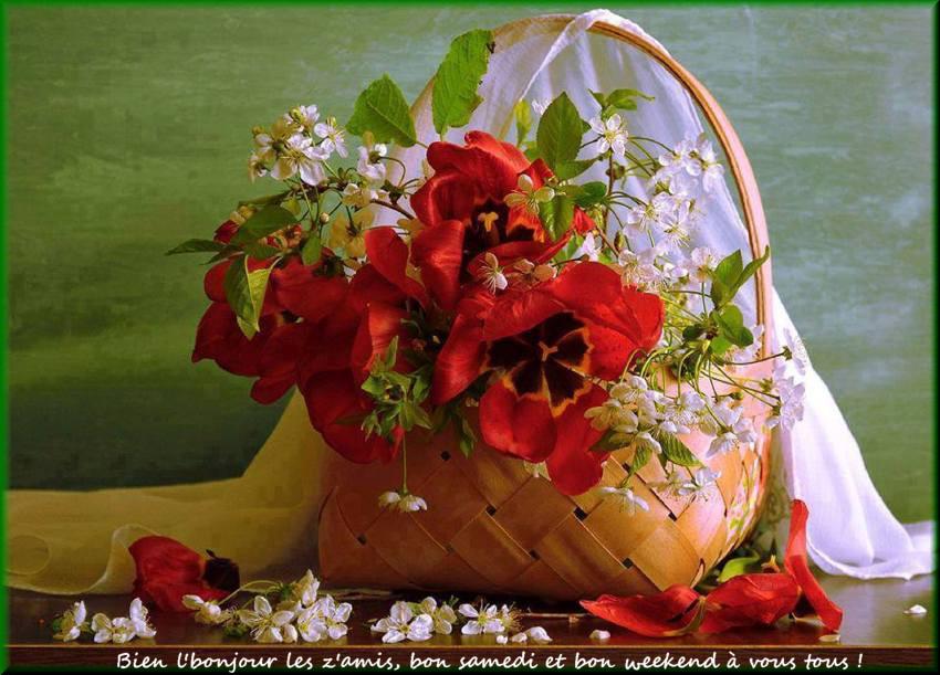 Les bonjours et contacts jounaliers du Mois de Mai 2019 - Page 2 25051910