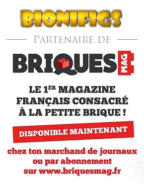 Affiches Briques Mag