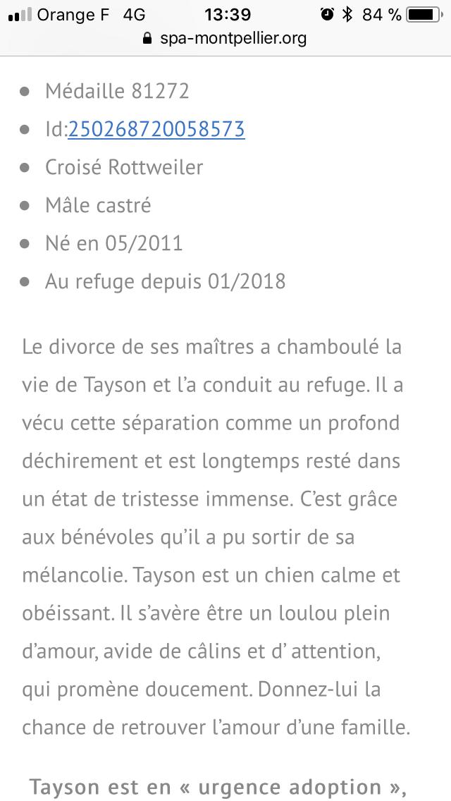 Tayson né en 2011: une gueule d'amour Edff0110