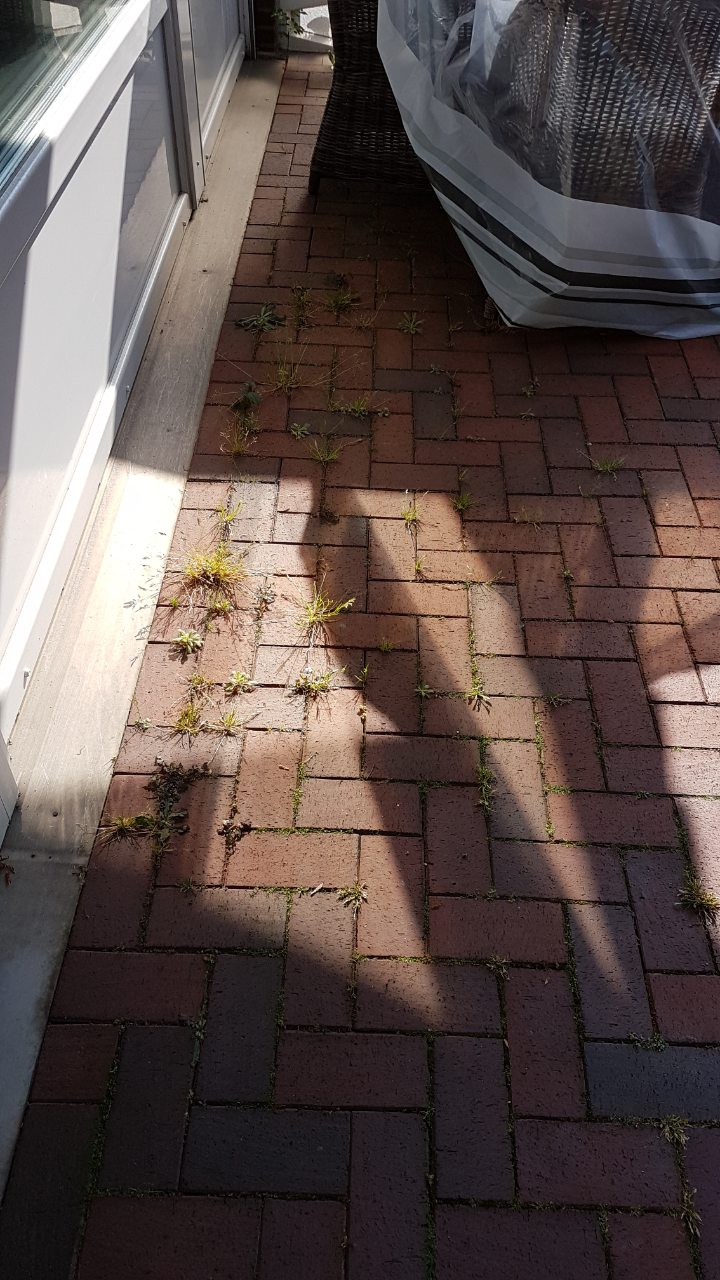 Мой сад-садочек 0-02-022