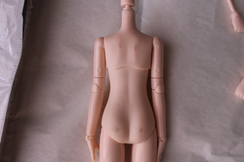 [VENDS]Obitsu/Azone Pure neemo/Vêtements/Chaussures/Eyechips Img_8214
