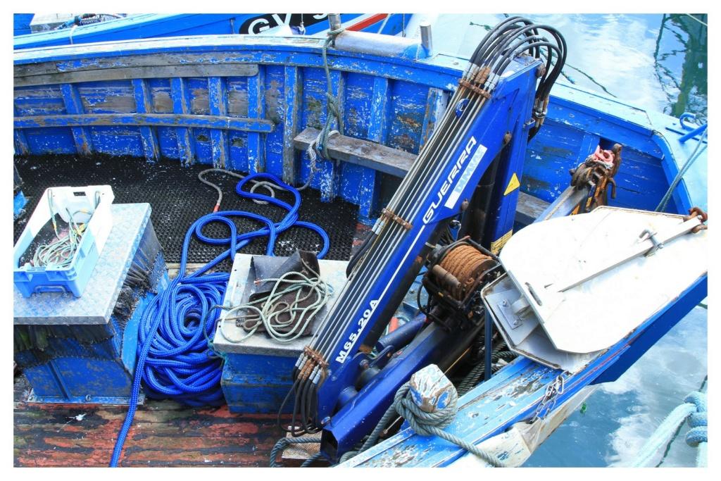 [VIE DES PORTS] Quelques bateaux de pêche (sur nos côtes Françaises) - Page 6 310