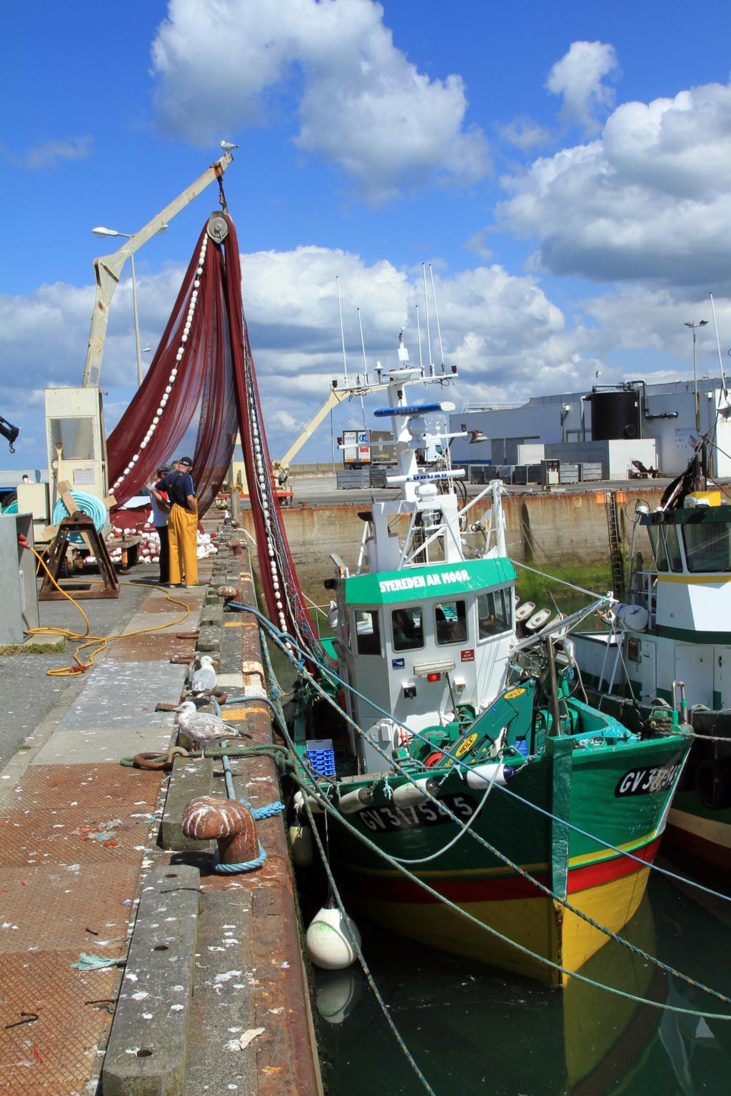 [VIE DES PORTS] Quelques bateaux de pêche (sur nos côtes Françaises) - Page 6 Img_1710