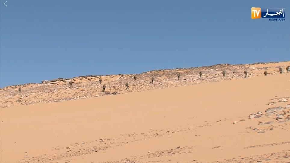 القوات البرية الجزائرية  - صفحة 50 Pziuzo10