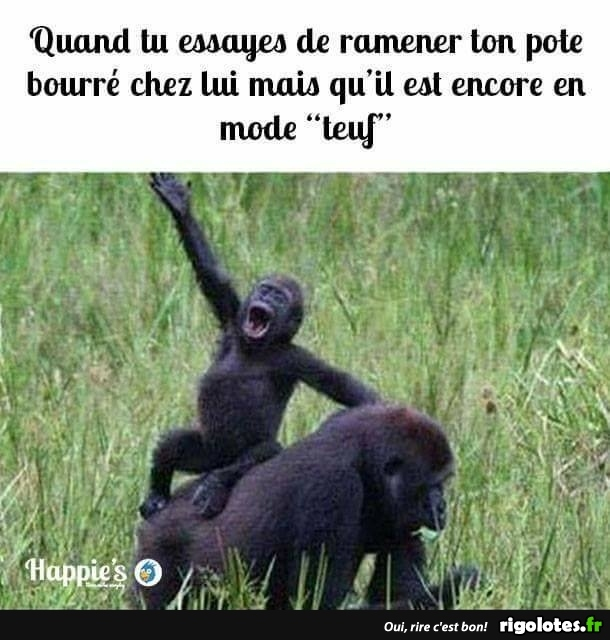 HUMOUR - Page 30 20170817