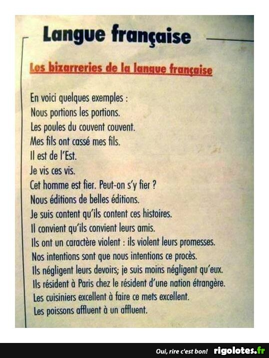 HUMOUR - Page 29 20171018