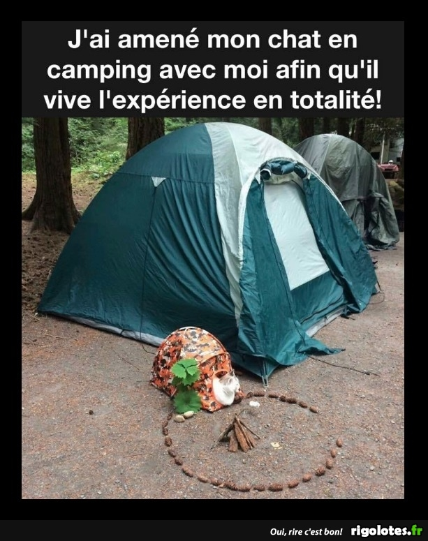 HUMOUR - Page 31 20171134