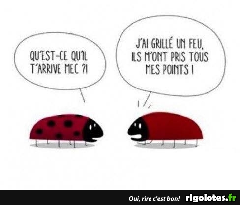 HUMOUR - Page 4 20180126