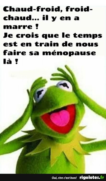 HUMOUR - Page 29 20180680