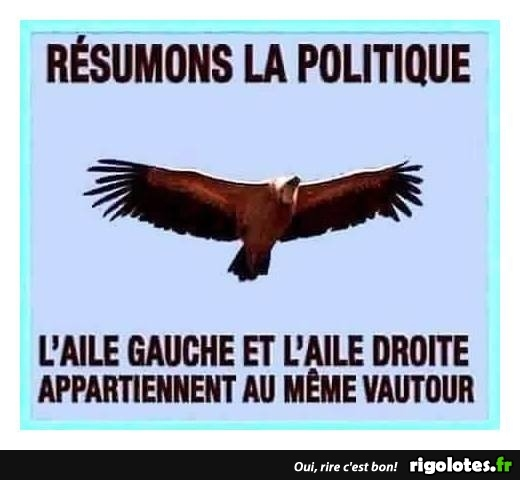 HUMOUR - Page 29 20180682