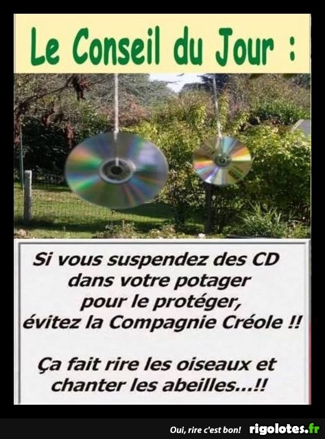 HUMOUR - Page 30 20180684