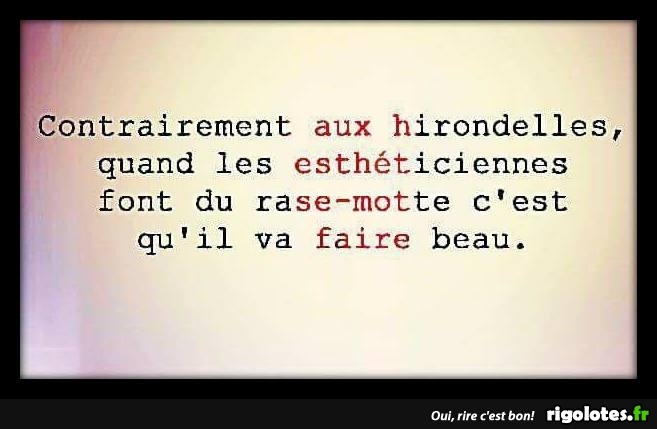 HUMOUR - Page 30 20180686