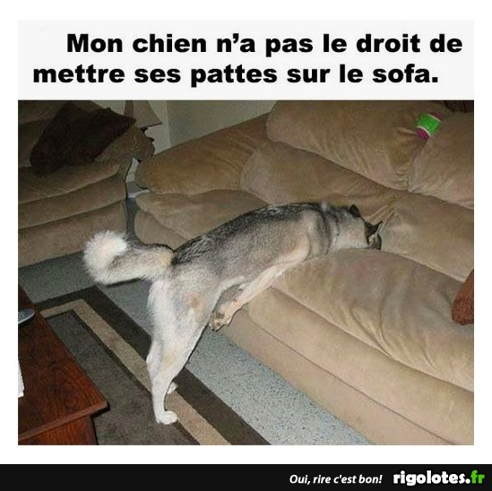 HUMOUR - Page 30 20180721