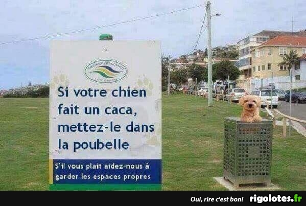HUMOUR - Page 5 20180750