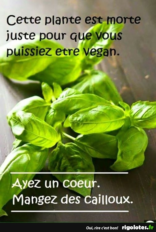 HUMOUR - Page 10 20180770