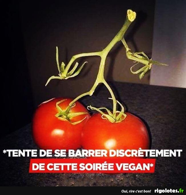 HUMOUR - Page 10 20180778
