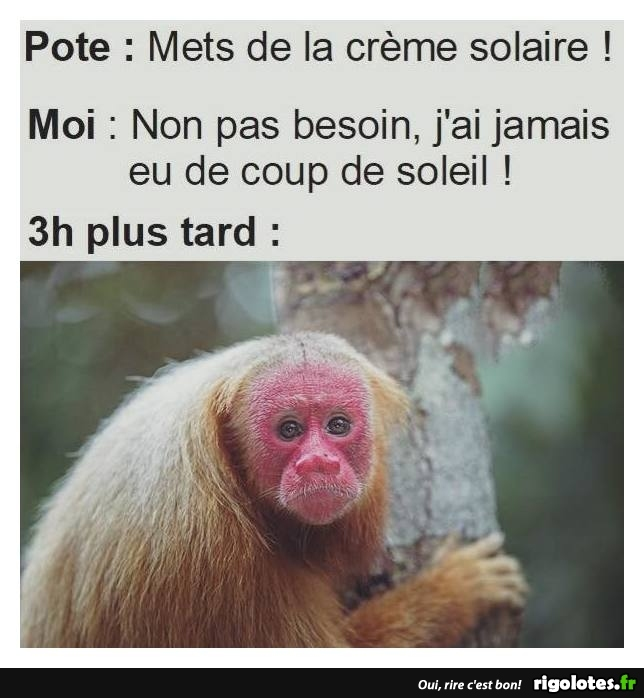 HUMOUR - Page 14 20180786