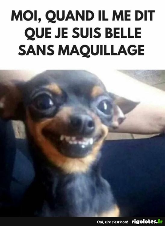 HUMOUR - Page 15 20180795