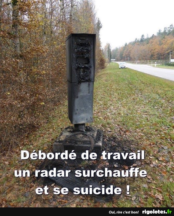 HUMOUR - Page 37 20180827