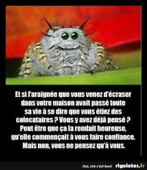 HUMOUR - Page 39 20180839