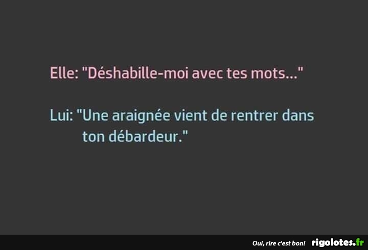 HUMOUR - Page 14 20180873