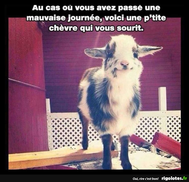 HUMOUR - Page 39 20180912